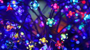 LED & Liquid Crystals Display