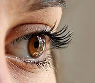 עין תותבת ושתלים ארובתיים