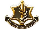 לוגו צהל - פורום ארגוני החיילים הבודדים