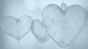 בחירת הלב - אימהות בוחרות בחינוך ביתי