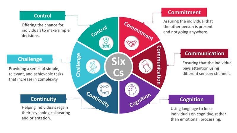 The Six C's Model - ICFR