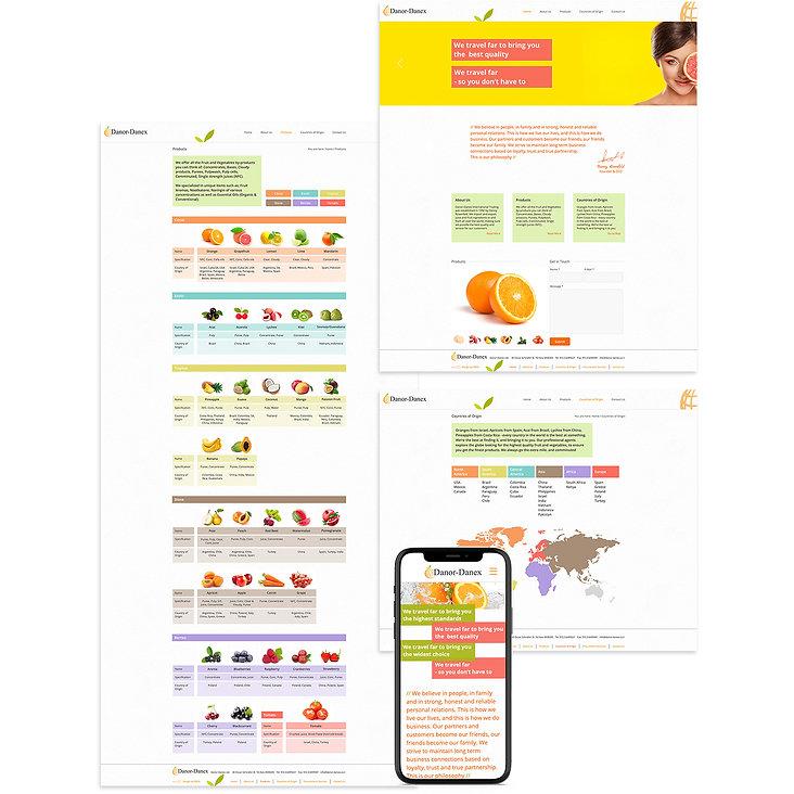 לבנות אתר וויקס לחברה בינלאומית לייצוא וייבוא פירות ומיצים