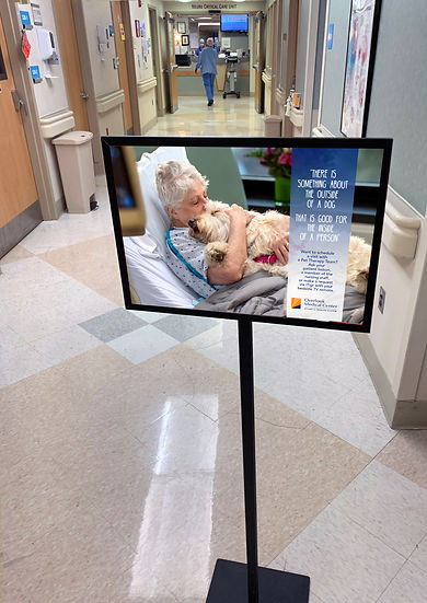 Ovelook Therapy Dogs