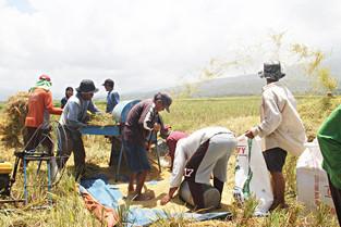 Agri, tourism to boost Bicol economy