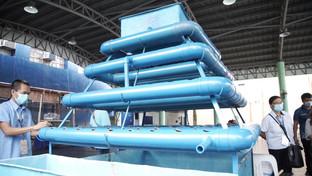 BFAR gives aquaponics  to 10 Nagueño families