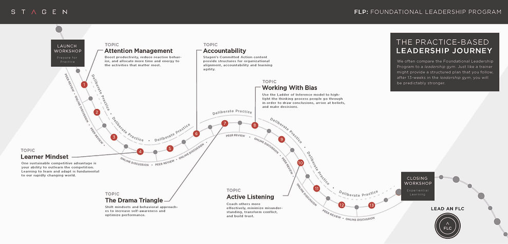 FLP Leadership Journey 2020 One Sheet_Pa