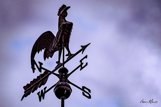 rooster weather vane sm file.jpeg