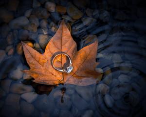 web_leave_ring-1.jpg