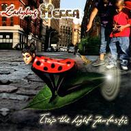 Ladybug Mecca.jpg