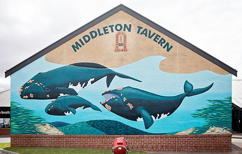 Middleton Tavern Whale Mural Updated.jpg