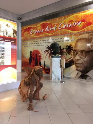 Prestation aeroport Martinique