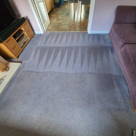 Carpet cleaner hamilton