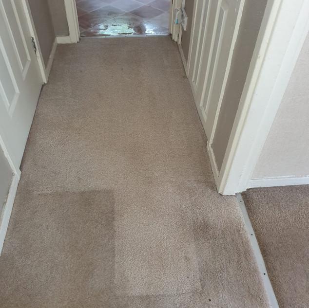 Carpet cleaning cambuslang