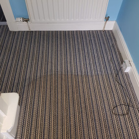 Carpet cleaner carluke
