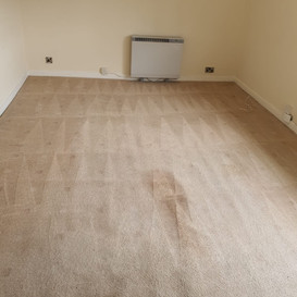 Heavy soiled carpet cleaning