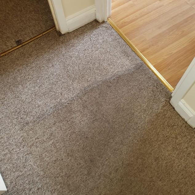 Carpet cleaner blantyre