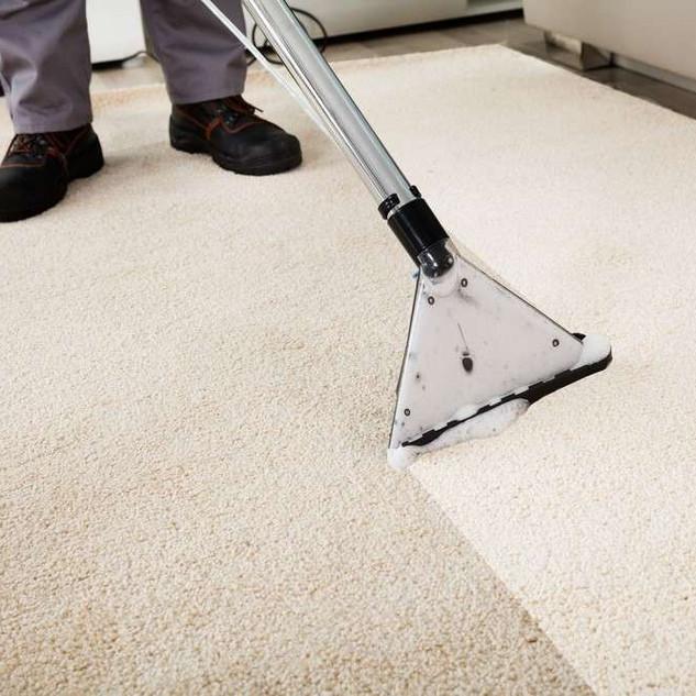 carpet cleaning uddingston