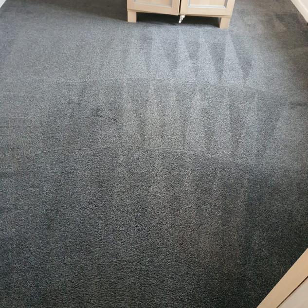 Carpet cleaner moddiesburn
