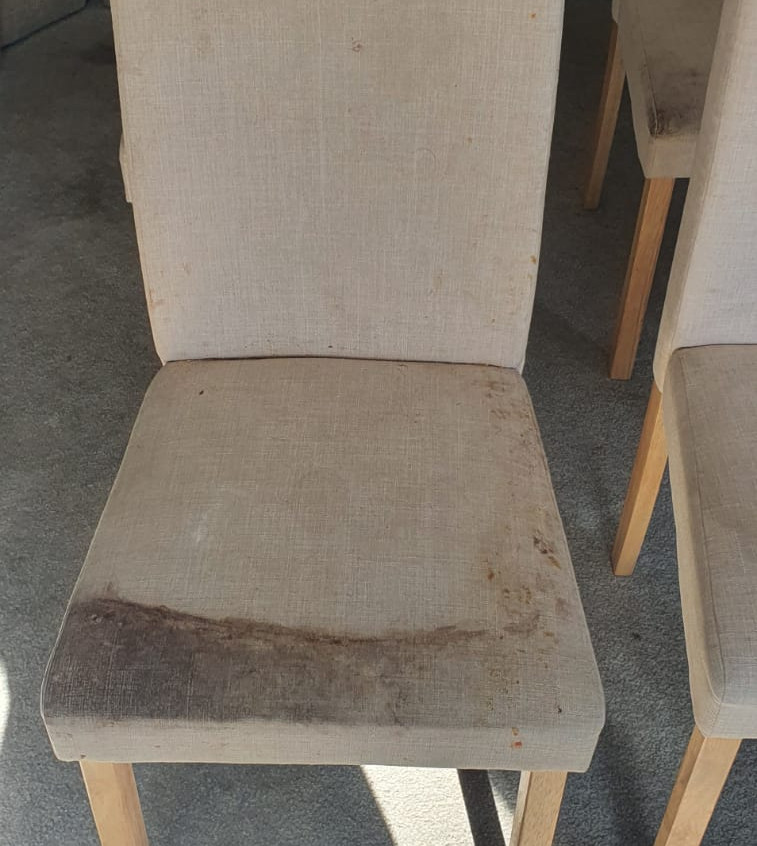 Dining Room Chair Cleaning