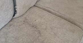 Recent Sofa Cleaning