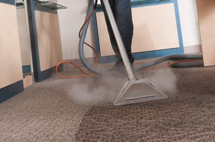 Carpet Cleaner Newton Mearns, Professional Carpet Cleaner Newton Mearns, Carpet Cleaning Company Newton Mearns