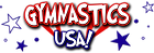 Gymnastics USA Corona Virus Online Gymnastics Classes for students to learn from home