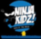 NINJA KIDZ ONLINE SKILL TRACKING VIRTUAL FEEDBACK ONLINE CLASSES