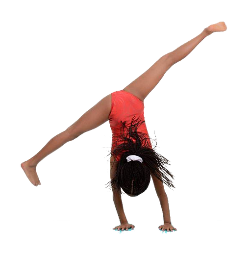 Gymnastics, chartwheel, gymnast, leotard, handstand rec classes, recreational classes