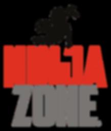 NinjaZonePositive.png