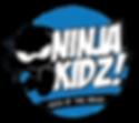 msc-ninja-300x268.png