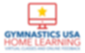 gymnastics home learning virtual classes an online feedback