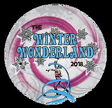 winter gymnasics competition, gymnastics meet, winter gymnastics competition