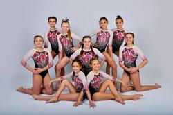Level 7 Team-550