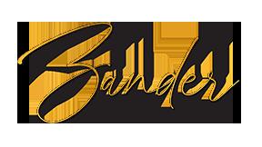 zander logo.png