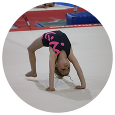 Kids gymnastics, children's gymnastics, recreational gymnastics, gymnastics gym, gymnastics classes, gymnastics, gymnastics near me, girls gymnastics, youth gymnastics, youth gymnastic center, gym near me, kids gym near me, youth gym classes