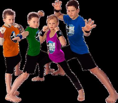 team ninja.png