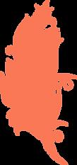 DBA - orange feather.png