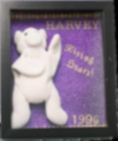 rising star mascot harvey