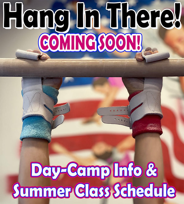Hang in there summer info2.jpg