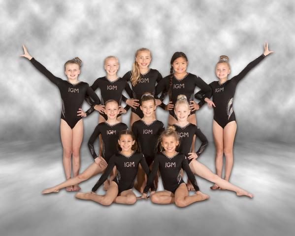 Level 5 Competitive Team