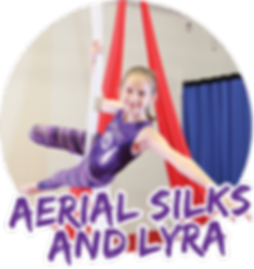 Gymnastics USA is the Biggest Gymnastics Center in the State of Florida and has a huge aerial arts program like silks and lyra