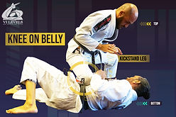Knee on Belly- Holds - 6 Levels Orlando.