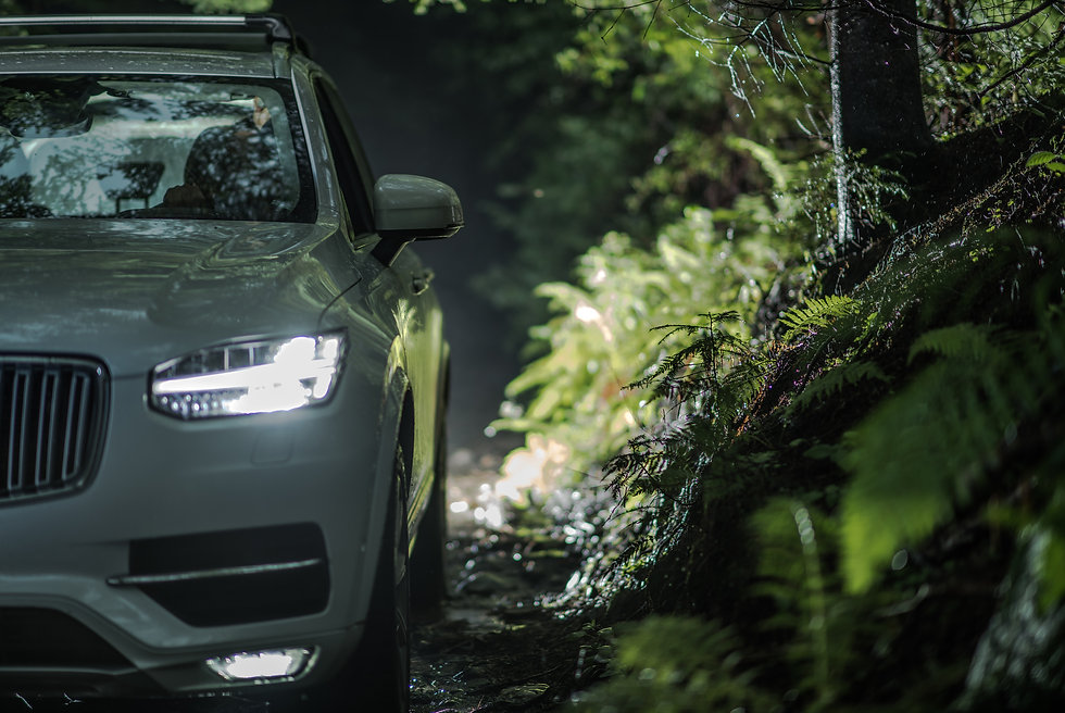 off-road-driving-at-night-DS6UR2J.jpg