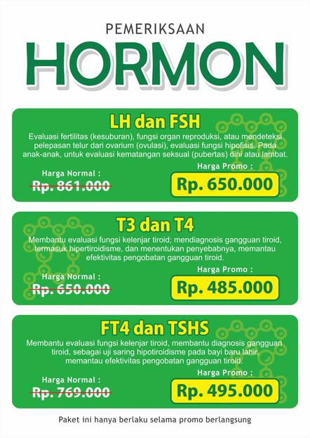 paket hormon.jpg