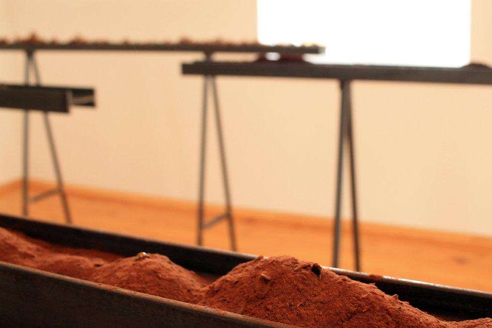 mathilde leveau - un meilleur avril - Acier, végétaux de la Vallée de la Misère (Sarthe, Fr)  Espace d'exposition L Wie Materie, Salem, Allemagne  2019