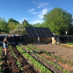 Ground mount solar garden