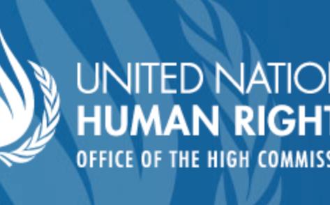 UN experts urge release of Galal El-Behairy