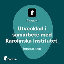 Bonzun_Carousel-03.jpg