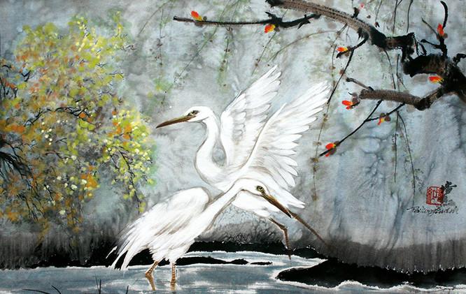 the egrets walking in the wet-land.jpg
