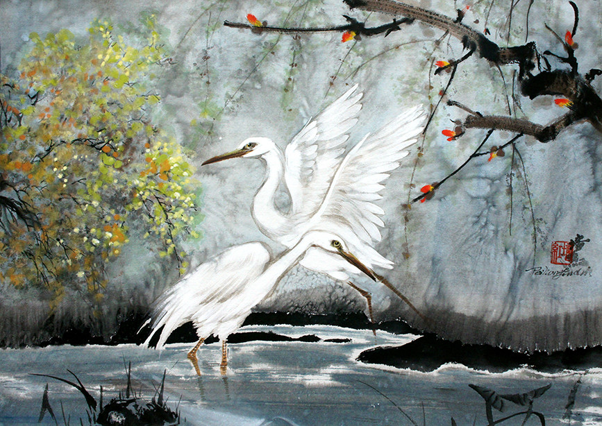 the egrets walking in the wet-land.jpg